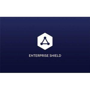 Matrice 210 V2 Enterprise Shield